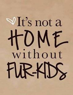 That's right!! My furbabies know it all! I tell Jax on a daily bases just how glad I am that he can't talk!! Cause that baby could ruin me!! Haha:))