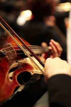 The violinist's point of view from the back of the orchestra. Sound Of Music, I Love Music, Music Is Life, Pop Music, Violin Art, Violin Music, Guitar, Musica Spotify, Musik Genre