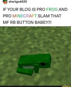 'ª shartgod420 IFYOUR BLOG IS PRO FROG AND PRO MINECRAFT SLAM THAT MF RB BUTTON BABEY!!! – popular memes on the site iFunny.co Frog Pictures, Funny Pictures, Sapo Frog, Stupid Memes, Funny Memes, Frog Art, Cute Frogs, Frog And Toad, Wholesome Memes