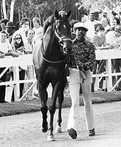 Ruffian was an easy choice for 1974 champion juvenile filly, after her undefeated season. Photo: Susan Thomas