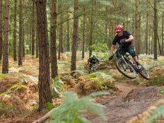 Mountain Bike Technique - IMB Technique pages for beginners  http://www.imbikemag.com/technique/?q=Beginner