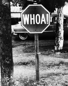 Horse Traffic Sign (for horses) in Wartrace, Tennessee 1959. Don't see many of these around anymore.