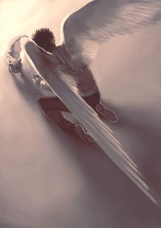 Cielo                                                                                                                                                                                 Más