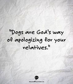"LOL dog owner humor ""Dogs are God's way of apologizing for your relatives. Great Quotes, Funny Quotes, Life Quotes, Dog Quotes Love, Crazy Quotes, Badass Quotes, Family Quotes, Quotes Quotes, I Love Dogs"