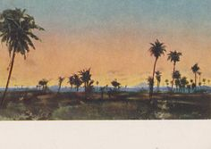 Palm Trees. Collection / Set of 11 Vintage от RussianSoulVintage