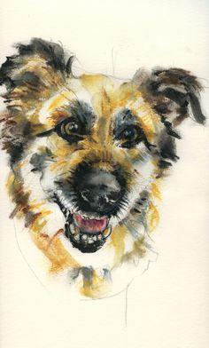 Bruno. Aquarell / watercolour. Freie Arbeit / free works: www.hundepersoenl… #dogportrait #tierportrait #art #dogart #animalartist #petportrait