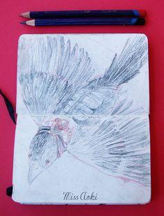 Sketch 2: Bird  by Miss aoki #character #drawing #fantasy #flying #illustration #pencil #pencildrawing #pencilsketch #sketch #sketchbook #sketchdrawing #travel