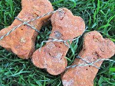 Doggy Dessert Chef - Dog treat and biscuit recipes Diy Dog Treats, Homemade Dog Treats, Dog Treat Recipes, Dog Food Recipes, Dog Biscuits, Tomato Basil, Dog Snacks, Biscuit Recipe, Diy Stuffed Animals