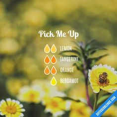 Pick Me Up Promotes: Calm