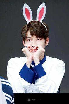 Wonwoo Bunny