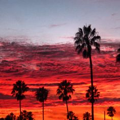 December Sunsets, Ventura CA - Images by Sunny Oberto