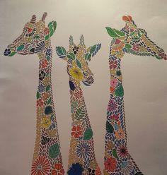 Adult Coloring Giraffe Animal Kingdom Lisa Giraffes