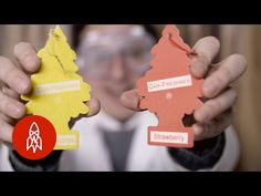 The Story of the Little Tree Car Air Fresheners: So Fresh and So Clean - YouTube