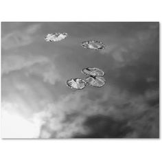 Trademark Fine Art Lily Pads & Sky Canvas Wall Art by Patty Tuggle, Size: 22 x 32, Multicolor