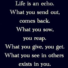 Life is an echo. What you send out, comes back. What you sow, you reap. What you give, you get. What you see in others exists in you. thedailyquotes.com