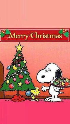 Peanuts Christmas, Charlie Brown Christmas, Charlie Brown And Snoopy, Christmas Art, Xmas, Peanuts Cartoon, Peanuts Snoopy, Snoopy Quotes, Snoopy And Woodstock