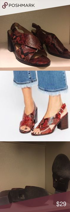 Snakeskin low heel sandals I've only worn these ONE time!!! Adorable and comfy! They're just not my style anymore! Aldo Shoes Sandals