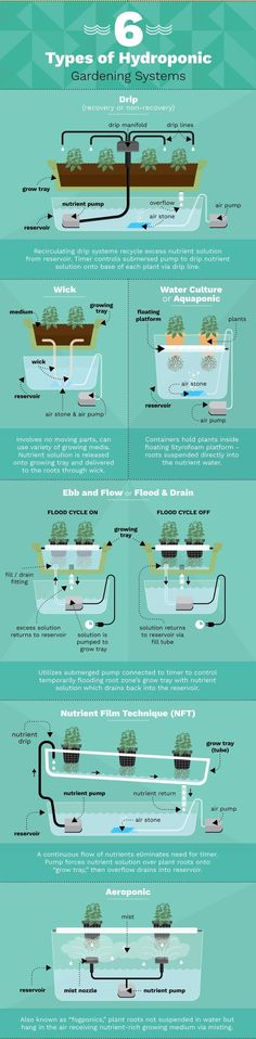 Six types of hydroponic gardening systems