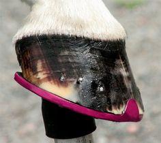 cool coloured horse iron feet  www.iconadeironchi.com