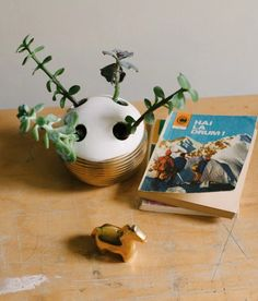 Forget the handle of your teeth-cleaning tool: This blogger prefers to have the stems of her healthy succulents stick out of this former toothbrush holder instead.