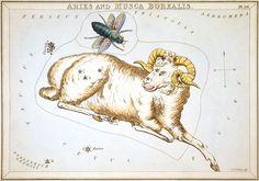 Sidney Hall, Urania's Mirror (1824) | BILDGEIST