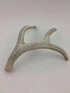 """Perfect cribbage """"board"""" for antelopes!"""