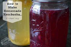 How to make homemade kombucha.