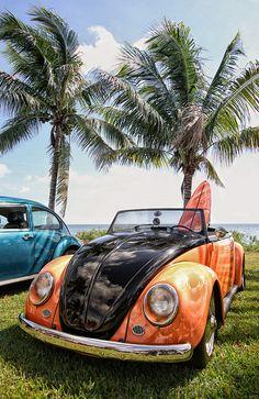 Volkswagen Beetle Beetle Bug, Vw Beetles, Bug Car, Vw Classic, Beetle Convertible, Vw Cars, Vw Camper, Cool Cars, Dream Cars