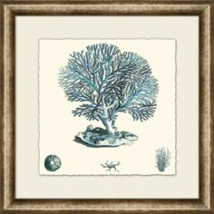Accessories, Blue Coral Framed Art V, Accessories | Havertys Furniture