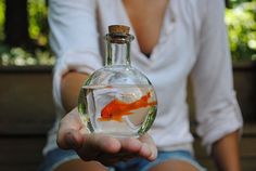 Carnival, little mermaid or pirate themed center pieces/prizes. Make sure to have enough goldfish starter kits for guests to take home with the fish