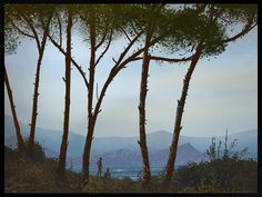 #Landscape study from photo founded: http://limbolo.blogspot.com/