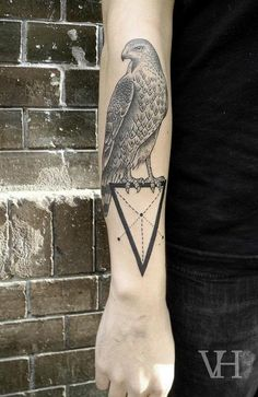 I would love to find reference to the symbolism used in some tatts... here a Hawk sits upon an inverted triangle with bisecting lines through various vectors.