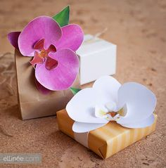 Dicas da Cacau: Orquídeas feitas com papel