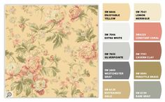 HERITAGE ROSE - ColorSnap by Sherwin-Williams