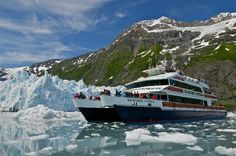 We took a tour on this 137' catamaran and viewed 26 glaciers.(Alpine, Tidewater, and Piedmont). Wildlife included harbor seals, sea lions, humpback whales, orcas, dall's porpoise, sea otters, eagles, kittiwake rookeries, and other waterfowl.