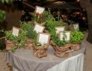 Tableau con piantine aromatiche - artesanum com