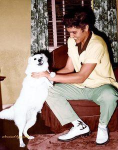 Risultati immagini per Elvis Presley Lisa Marie Presley, Elvis E Priscilla, Elvis Presley Young, Young Elvis, Elvis Presley Photos, Rare Elvis Photos, Richard Chamberlain, Ann Margret, Vivien Leigh