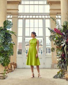 Lace trim bib cotton dress - Lime | Dresses | Ted Baker UK