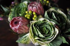 For the Cook's Thanksgiving Table: Flowering Kale | The Kitchn