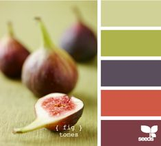 fig tones - #DesignSeeds Another one of my favorites.