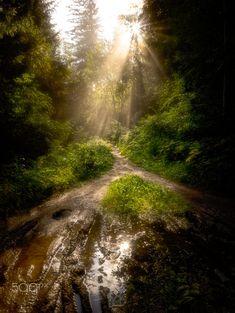 Morning hike by Johann Trojer / 500px Austria, Hiking, Country Roads, Walks, Trekking, Hill Walking