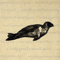 Printable Seal Image Download Digital by VintageRetroAntique