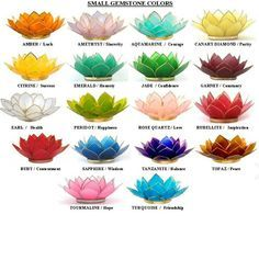 color for lotus flower - Google Search