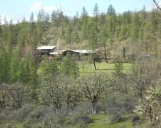 Check out this beautiful Oregon ranch! This mountain hideaway is one of a kind and features it own lake. www.landleader.com/land-for-sale/star-ranch Ranches For Sale, Land For Sale, Oregon, Mountains, Star, Check, Nature, Travel, Beautiful