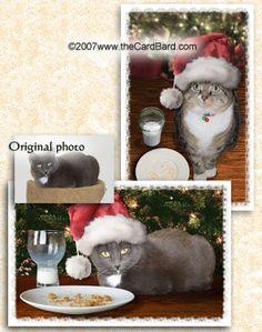 Merry Christmas from Santa's little helper.  Ho Ho Ho.