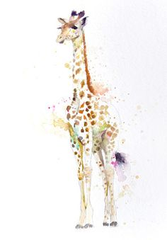 JEN BUCKLEY   signed PRINT of my original GIRAFFE  watercolour Large A3