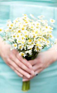 Sweet little adorable bouquet of chamomile. #bouquet #chamomile    little winter bride: photography