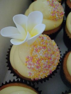 Classic Vanilla Cupcakes frosted with Special Vanilla Buttercream, styled with Pink, Yellow or Silver Sprinkles, with the odd Sugar Frangipani thrown in. Half dipped cupcake idea from minh at ecupcake/coulture cupcakes. Yellow Cupcakes, Flower Cupcakes, Yummy Cupcakes, Wedding Cupcakes, Cupcake Cookies, Vanilla Cupcakes, Cupcake Cupcake, Mocha Cupcakes, Gourmet Cupcakes