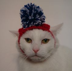Hand Knitted Red White Blue Pom Pom Hat for a Cat  by KraftyKatsUK, £5.50