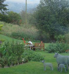 Alpine meadow garden